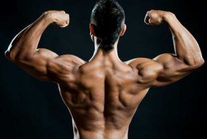 Anabolic Steroids and Supplements Are Safe to Use