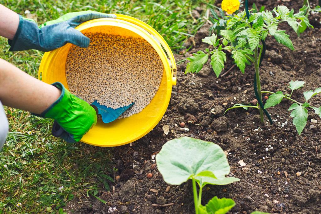 plant fertilizer stains